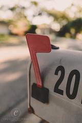 Mailbox (cmh photographs) Tags: mail mailbox flag up outdoor