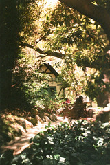 Exa 1C Original Busch Gardens 5 () Tags: original busch gardens pasadena los angeles california history heritage theme park film tour mill waterwheel 1920s adolphus public private abandoned exa east germany ddr gdr slr m42 classic retro vintage 35mm camera