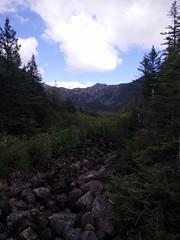 010 -Parc national de la Gaspsie : Lac aux Amricains (Arfphandal Forfal Forphan) Tags: trip qubec gaspsie forest tree arbre fort nature water eau park landscape