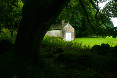 The White Door (Costigano) Tags: green white door outdoor trees scenic scenery lush canon eos wicklow ireland irish