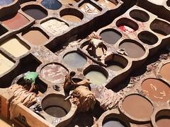 Curtidores de piel. Fez (yanitzatorres) Tags: tradicional artesanas artesanos artesanal trabajo cuero piel pieles curtidores curtido fes fez morocco marroqu marruecos