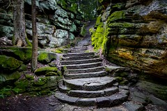 Stairing up into the woods (Notkalvin) Tags: theledges ledges cuyahoga cuyahogavalleynationalpark outdoor path stairs rocks stone wild hike hiking moss trees woods ohio notkalvin mikekline notkalvinphotography stepping playonwords getoutinnature cleanair freshair amazing