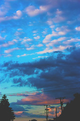 sky 2 (official310) Tags: flowers shadow roses sky nature clouds photoshop photography edit abstact official310 official310photography official310tv