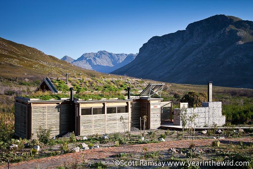 Kogelberg Nature Reserve - South Africa