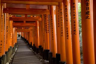 Thousand of torii at the Fushimi Inari Taisha (伏見稲荷大社)