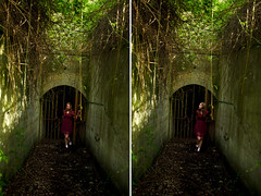it's like my eyes have been transfigured (Sarah-Louise Burns) Tags: trees red portrait sun sunlight leaves way gate pretty arch dress fort hill location story photograph hanging beacon harwich arched sarahlouiseburnsphotography sarahlouiseburns