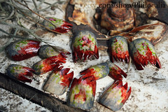 Zombie Nailzzz (*Treppenwitz*) Tags: holiday green halloween canon rebel blood texas zombie nail fake houston polish gross gore etsy pasadena false xsi