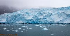 IMG_6374.jpg (MonkeySeeMonkeySnap) Tags: old blue cold ice nature water alaska boat ancient ak glacier seward aialik