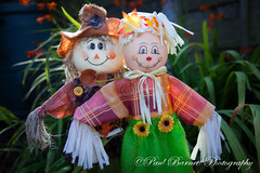 Mr  Mrs Crow (slaup) Tags: light garden couple scarecrow decoration smiles