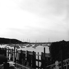Northport Harbor 1 (alanabramsphotography) Tags: blackandwhite bw ny newyork 120 6x6 tlr film boats li harbor freestyle kodak longisland d76 400 124g yashica yashicamat northport yashicamat124g aristaedu fomapan arista