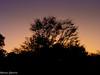 Cores do céu (Marney Queiroz) Tags: pordosol luz cores contra queiroz marney panasonicfz35 marneyqueiroz