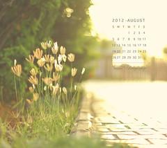 August Calendar (Faisal | Photography) Tags: morning flowers sun white green garden eos soft dof bokeh good 14 usm 50 tones ef ef50mmf14usm 50d canoneos50d faisal|photography فيصلالعلي agucalendar