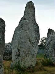 Alignements de Carnac 07 (mooonalila) Tags: menhirs morbihan carnac alignements