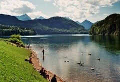 Alpsee (mikeasaurus) Tags: leica summer people sun lake green nature water grass clouds germany landscape bayern bavaria wasser fuji sommer natur wolken sunny 200asa swans grn landschaft summilux m4 3514 alpsee fujicolor sonnenlicht leicam4 autaut august2012