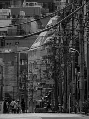 Tangled street (Simon*N) Tags: street monochrome japan tokyo traffic olympus 日本 東京 風景 omd 日常 m43 nichijou em5