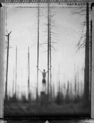 I Talk To You (Bastiank80) Tags: camera trees bw white black film nature field analog dark polaroid woods friend bright you live large talk negative human together instant 4x5 sheet format 55 expired wista