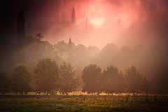 The Shire - Foggy morning (Photoskatto) Tags: light nature colors composition photography photo dof bokeh depthoffield explore nebbia luce theshire colorgrading arbizzano theauthorsplaza luigiscattolin