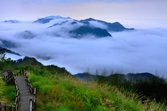 Season of clouds @ (Vincent_Ting) Tags: sunset sky clouds taiwan  formosa  jiayi   seaofclouds alisan    teafield
