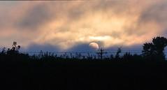 MAD SUNRISE (WORKING AMATURE) Tags: trees sun clouds nikon rise lense 1j1 1030mm