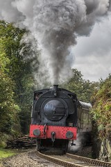 Austerity 0-6-0 'Repulse' (NB777) Tags: steam steamengine haverthwaite repulse 060 3698 lakesidehaverthwaiterailway hunsletausterity