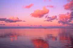 Sunset in Taveuni - Fiji (jeredtravel) Tags: pacificocean fishingboats beautifulsunset skyandwater tropicalsky romanticsunset peachcoloredsky pacificoceanandsky romanticsouthseasview