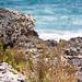 Puglia 2012 #02