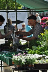 vegetables, bought and sold (Mika Lehtinen) Tags: stan market place selling buy stand vegetables marknad shop street morning finland customer marketplace vegetableseller