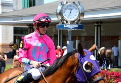 75. Tickled pink - 116 pictures in 2016 (Krasivaya Liza) Tags: 75 tickledpink jockey churchill downs churchilldowns racetrack horses louisville ky kentucky races pink 116picturesin2016