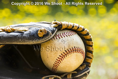 Old Baseball And Glove On A Summer Day (weeviltwin) Tags: base ball baseball balls baseballs glove gloves dandelions lawn green yellow old worn weshootcom