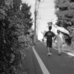 160724_ZenzaBronicaS2_010 (Matsui Hiroyuki) Tags: zenzabronicas2 nikonnikkorp75mmf28 fujifilmneopan100acros epsongtx8203200dpi