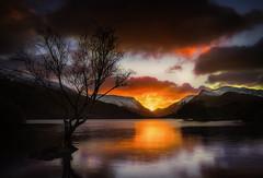 Llyn Padarn Sunrise (Dave Holder) Tags: llynpadarn sunrise landscape tree water mountains snow reflections canon70d canonefs1022mm leefilters morning dawn