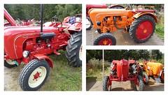 Porsche Traktoren (thomaslion1208) Tags: porsche tracktor bulldog trekker oldtimer vintage