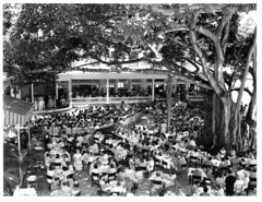 Moana Surfrider Hotel (jericl cat) Tags: moana surfrider hotel hawaii oahu waikiki honolulu vintage hawaiiana hawaiian history photo photos photograph snapshot band banyan performance show tree courtyard tropical tiki