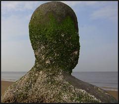 Head and shoulders ! (peterdouglas1) Tags: crosbybeach antonygormley