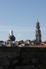 Goland  Porto (djoodje89) Tags: porto portugal goland oiseau plumes toits