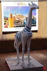 J'ai mme rencontr une girafe en Arige (mamnic47 - Over 6 millions views.Thks!) Tags: mazres manouchmuzikfestival lesgens img8122 girafe ruedesarts sculpture