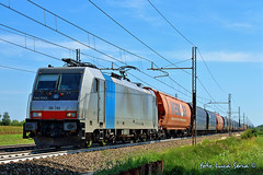 186 288 Railpool / RTC (equo25) Tags: treno merci ferrovia lokomotion traxx bombardier railpool e186 rail traction company tramogge portogruaro railway freight train hopper wagons eisenbahn lok ellok zug guterzug getreidesilowagen silowagen selbstentladewagen