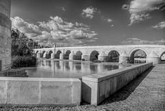 ponte di cordova (marcolef) Tags: cordoba fiumi ambienti
