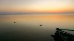 Albufera de Valencia VIII (Quique CV) Tags: albuferadevalencia albufera lago lake water sunset atardecer quietly calm tranquilidad summer verano spain 2016 boat duck patos barca sony ilce5100