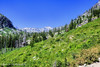 East Of Lick Creek Summit (jimgspokane) Tags: idahostate lickcreekroad idahomountains forests trees camping countryroads otw