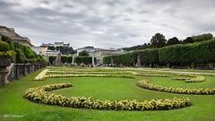 Schloss Maribell II (thanks for visiting my page) Tags: garden schlossmaribell oostenrijk flower bertmeijers bmeijers