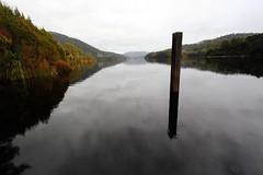 pole in the lake (keith midson) Tags: lake reflection water pole tasmania wilderness lakerosebery