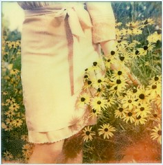 summer forever (solecism) Tags: flowers summer film girl sunshine vintage garden polaroid sx70 dress instant expired lynsey blackeyedsusan impossible gatsby colorshade howissummeroveralready