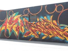 Nashville, TN Graffiti (Robbphotos1) Tags: nature nashville tm mfk nashvilletn paser audroc
