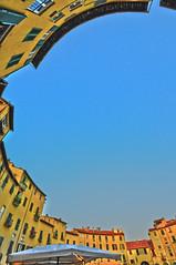 Lucca loop (Freddy Adams) Tags: lucca piazza grandangolo freddyadams anfoteatro