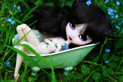 Rhadamanthe (Konato) Tags: blue girl eyes acrylic full wig pullip neo poison custom fc brune custo baignoire angelique dashka obitsu rhadamanthe konato