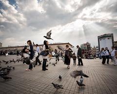 Bustle (CJ Dias Abeyesinghe) Tags: street city travel light people urban sun sunlight tourism turkey walking photography inflight pigeon crowd streetphotography istanbul tiles 5d rays hurry activity taksim shafts flurry crowded markiii taksimsquare ef1740mmf4lusm