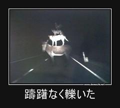 躊躇なく轢いた #動物 (Demochi.Net) Tags: life cute sexy japan fun japanese motivator culture 日本 ペット 猫 demotivator 金 家族 結婚 ゲイ 女 子供 おっぱい 愛犬 政治 社会 巨乳 文化 眼鏡 教育 demotivators 経済 女性 初恋 r18 女子 カップル 子猫 女装 お笑い motivators 会社 少子化 企業 ユーモア 恋 悪い 格差 風刺 一言 デモチ 大喜利