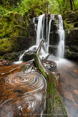 Waterfalls (LongLensPhotography co uk - Daugirdas Tomas Racys) Tags: uk wild mountain tree green fall nature water beauty wales forest river wonder landscape flow waterfall moss woods scenery natural stones falls fresh whirlpool trunk usk slope steep errosion talybont
