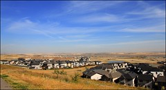 Fall over prairies (Una S) Tags: city blue autumn sky canada color colour calgary fall yellow see community view suburban alberta edge fields prairies far hilltop
